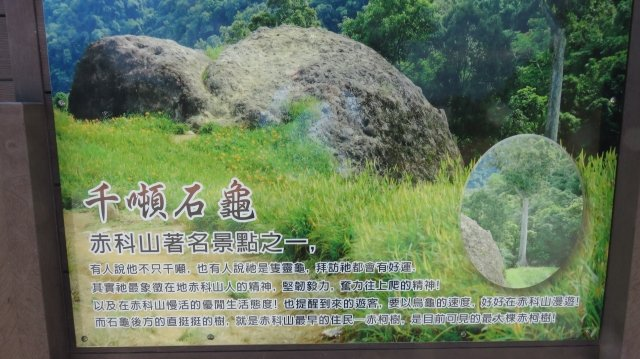 傳說中的千噸石龜,猶如赤科山上屹立不搖的守護神。