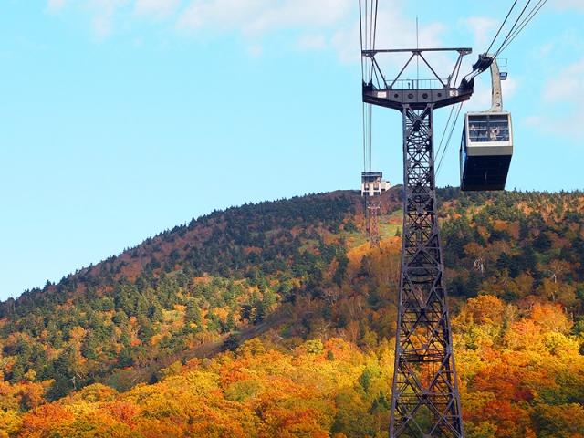 「八甲田山」的三段染楓情,從高空纜車上可盡覽無遺(易遊網提供)