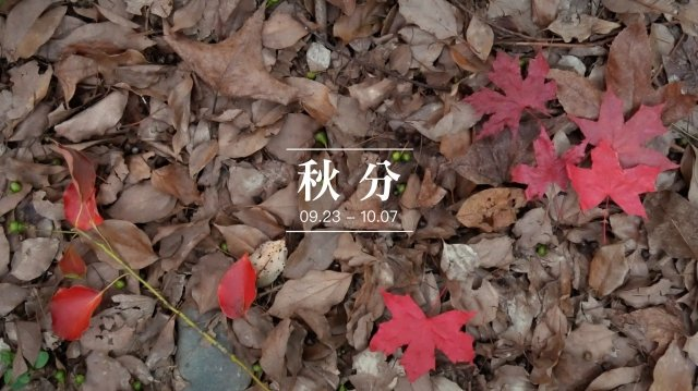 秋分這天一過,白日就開始變短,黑夜開始變長了。(C2食光提供)