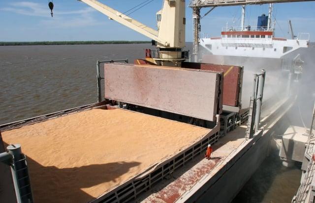 這次台美雙方簽署採購意向書,台灣未來兩年內預計再進口320萬至390萬噸的大豆。圖為大豆示意圖。(CARLOS CARRION / AFP)