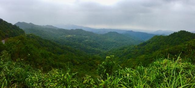 翠綠跌宕群山。(攝影/朱孝貞)