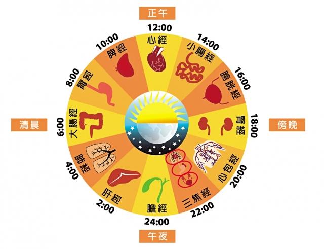 大腸經運行時間。(Shutterstock/大紀元製圖)