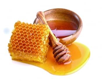 【食材醫道】潤肺補虛的蜂蜜