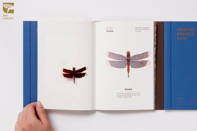 《昆蟲印刷指南》用說故事的方式取代原本枯燥的印刷理論,發揮設計之創意、多元與實驗性,榮獲2018「金點概念設計獎」最高榮譽獎。