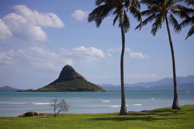 今年是台灣-夏威夷締結姊妹州省25周年紀念,圖為夏威夷海灘。(Pixabay/CC0提供)
