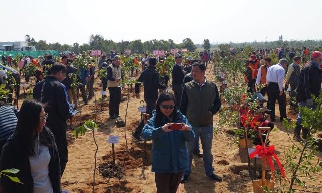 當日上千人聚集在安東一營區旁,共同栽種1,800棵樹。