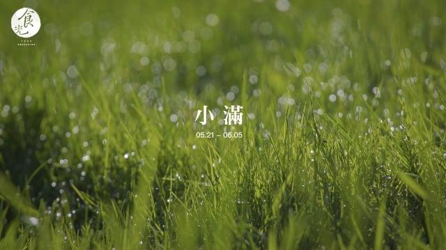 小滿季節悶熱、潮溼,因此養生重點,做好「防熱防溼」的準備。(攝影/C2食光)
