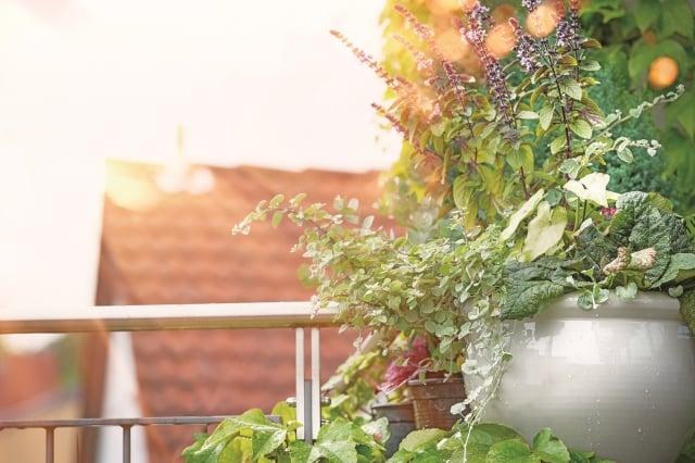 想像著這堆清爽的衣服即將享受日光浴的躍動之情。 (123RF)