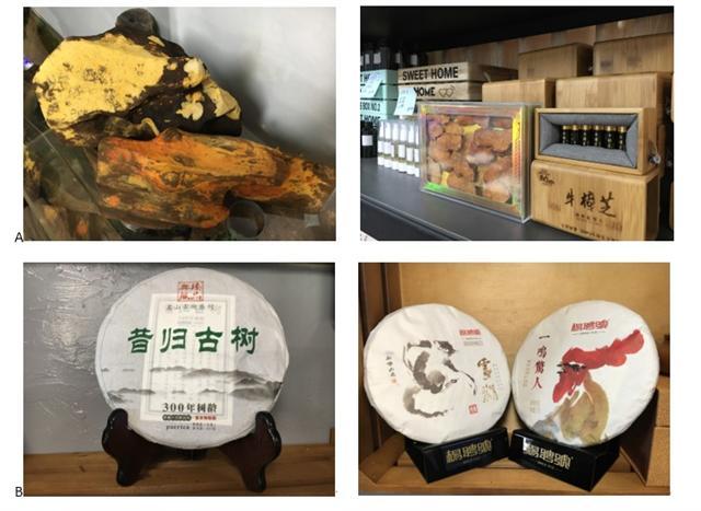 A牛樟芝及研發產品、B楊聘號普洱茶。(記者周惠貞/攝影)