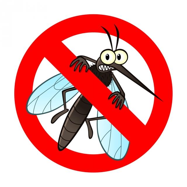 常見防蚊產品哪些好用?怎樣使用,才能有效防蚊又不傷身?(123RF)