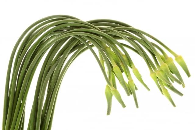 韭菜花被網友認為適合當作中國國花,反諷當今社會。(Fotolia)