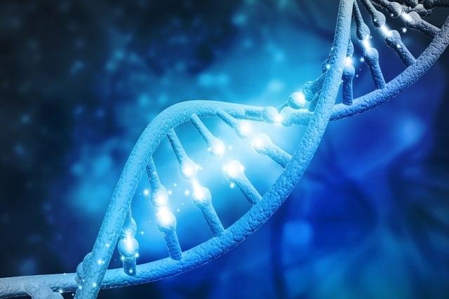 近期一份發表在《自然-結構與分子生物學》(Nature Structural and olecular Biology)期刊的研究發現,「綁定紫外線損傷DNA蛋白」(UV-DDB)在人體微觀中像「直升機」一樣四處勘察受損DNA。(ShutterStock)