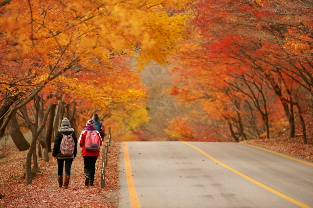 內藏山秋景。(韓國觀光公社提供)