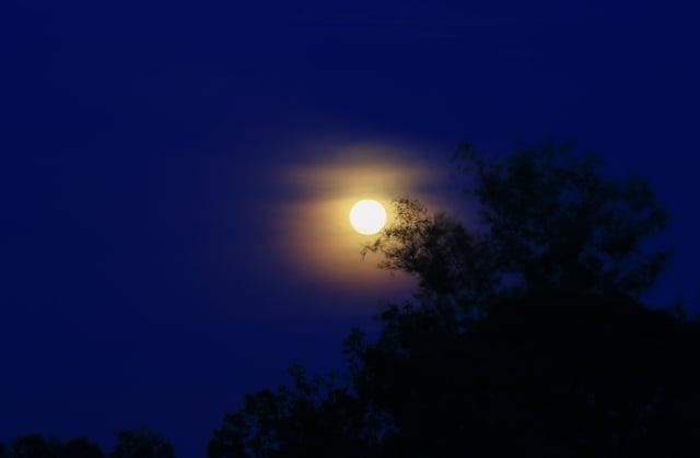 窗外,圓圓的月亮高掛在那棵龍眼樹梢,月光灑進廳裡來。(123RF)