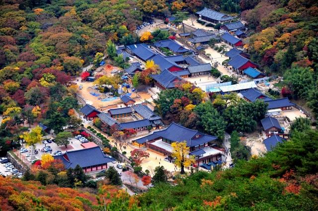 釜山梵魚寺。(韓國觀光公社提供)