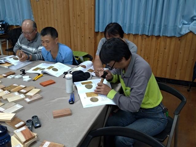 國家森林志工專心檢視木材特徵,作為往後解說之用