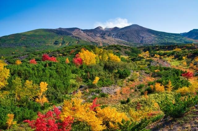 北海道秋冬交接期,景色亦最豐富。(shutterstock)