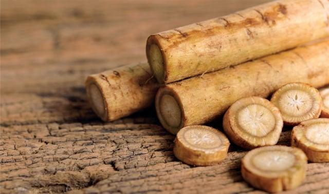 《本草綱目》裡記載:牛蒡「性溫、味甘,無毒,通十二經脈、除五臟惡氣,久服輕身耐老」。(Shutterstock)
