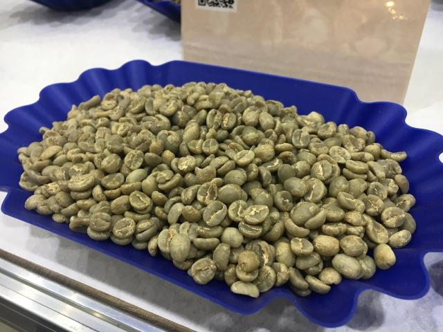尚未烘焙過的咖啡生豆。(攝影/林紫馨)