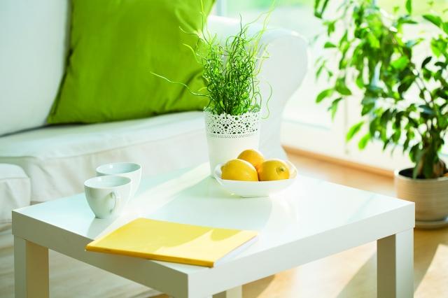 打開窗簾,讓陽光進來,一種回歸,珍惜大自然的種種恩賜,心會變得更加寧靜祥和……。(123RF)