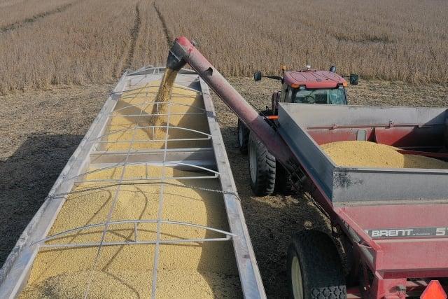 中方承諾在2020年購買500億美元美國農產品。(Joe Raedle/Getty Images)