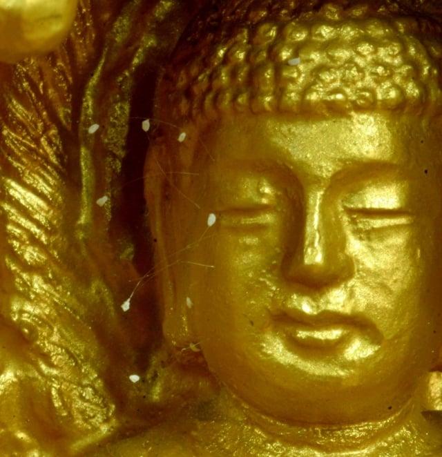 韓國全羅南道順天市海龍面的須彌山禪院的佛像上,出現了佛家傳說中的優曇婆羅花。(攝影/徐良玉)
