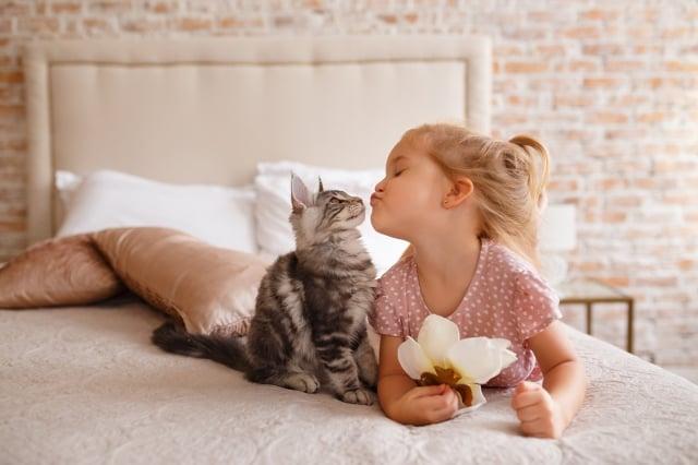 很少有孩子不喜歡毛茸茸的貓咪,而貓獨特的性格也讓許多飼主非常喜歡。(shutterstock)