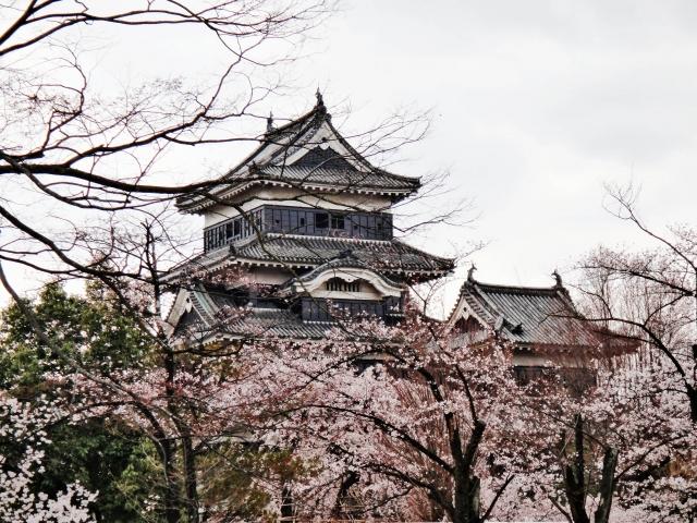 日本是亞洲地區生活費最高的國家。圖為日本松本城櫻花綻放。(藍海/大紀元)