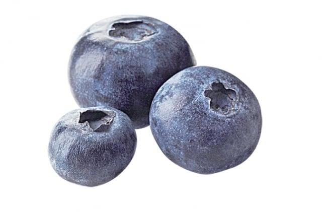 藍莓中的白藜蘆醇是二苯乙烯類的一種植化素,可以抑制流行性感冒病毒的複製。(123RF)
