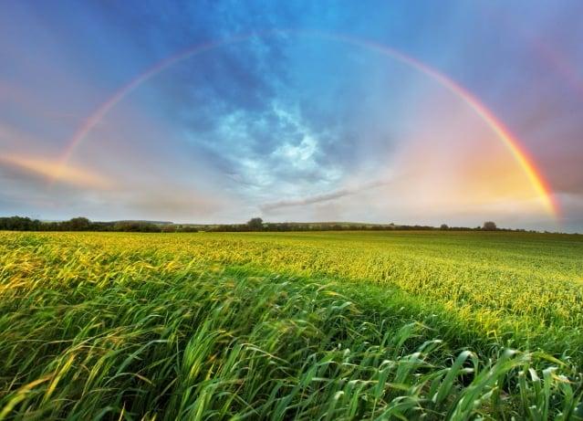 頭頂的那一抹虹,足以讓我原諒甚至忘記之前在風裡雨裡的每一步艱難跋涉。(Fotolia)