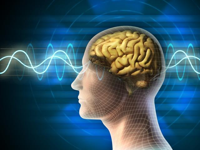 外科醫師從腫脹的右顳葉切下一部分腦組織,但病理學家表示腦組織正常。 「他一定是選錯地方切片了。」我們斷定。(Fotolia)