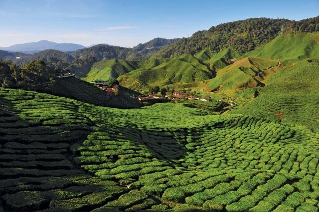 金馬崙高原是馬來西亞人最愛的避暑勝地。(馬來西亞觀光局提供)
