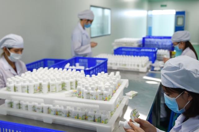 台灣內需產業的配置將有所調整,包括:生技醫療、公共衛生,以及防疫物資的製造,將會是未來的發展重點之一。圖為藥品示意圖。(NHAC NGUYEN/AFP via Getty Images)