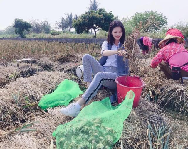 同推大埤鄉農產三寶酸菜、蝴蝶蘭與蒜頭。(文觀處提供)