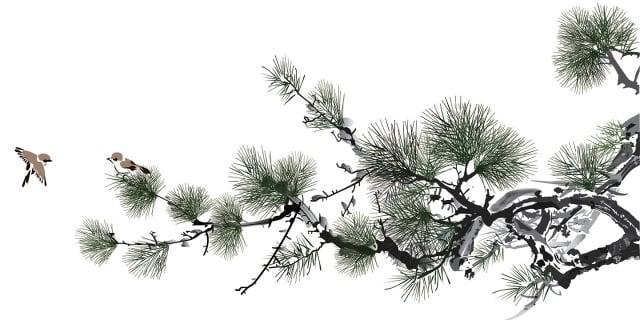 顯聖降福,護佑百姓,行神跡化解瘟疫災禍。(Shutterstock)