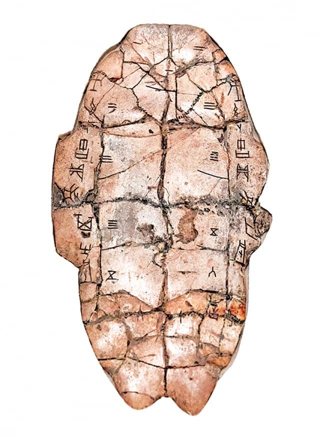 古人常以龜甲占卜。 秦始皇找人占卜的結果 是應該去出巡。於是, 秦始皇踏上了他人生最 後一次出巡的道路。(Shutterstock_)