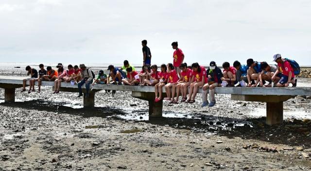 退潮時蟹類爬出泥灘地下的家,到地上覓食,吸引許多小朋友。