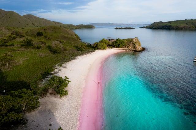 科莫多島的粉紅沙灘浪漫唯美。(Shutterstock)