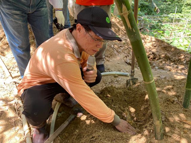 農民說,先仔細觀察土壤的裂痕,裂縫代表底下有竹筍。(攝影/記者林紫馨)