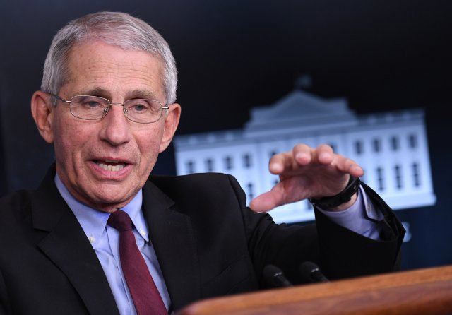 美國國家過敏與傳染病研究院主任佛奇。資料照。(AFP)