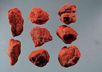 硃砂有毒嗎?——從古代醫典及現代藥典看硃砂