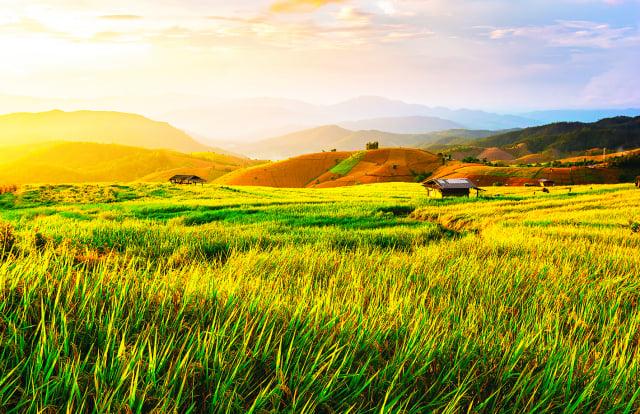 西元前209年夏,陳勝吳廣在大澤鄉起義,掀起了反秦浪潮。(Shutterstock)