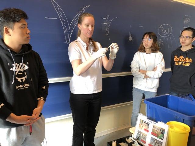 屏東科技大學學生赴丹麥受訓,藥物學上課狀況。