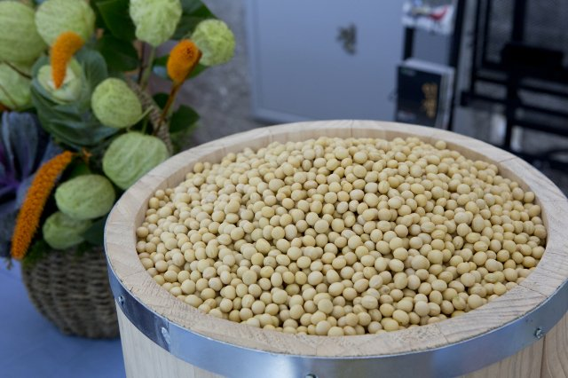 麟蹄山區還廣泛種植著好吃的大豆,利用此地生產的大豆製作出的豆腐,香氣特別濃郁醇厚。(江原道麟蹄郡提供)