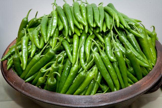品質優良的麟蹄青椒,清甜可口,非常受到人們喜愛。(江原道麟蹄郡提供)
