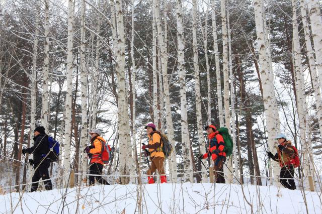 遊人可於入口處完成登山記錄後,徒步進入森林。(江原道麟蹄郡提供)