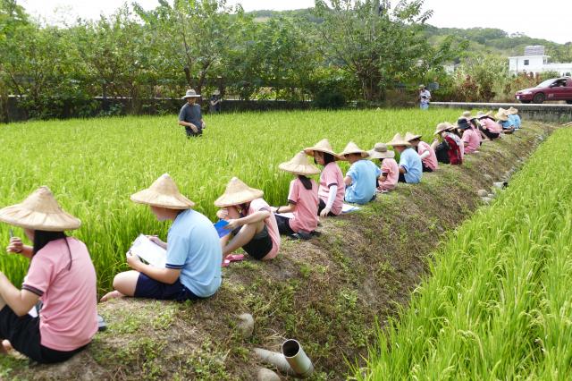 準備下田的學生先靜靜地坐在田埂上,讓雙腳泡進冰涼的田水裡,感受水稻田裡的自然氛圍。(攝影/賴瑞)