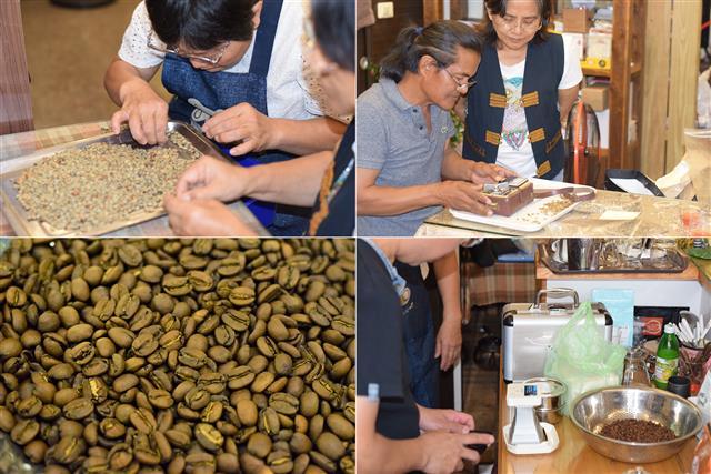 天堂鳥咖啡館烘豆教學,烘焙前學員專注精選優質生豆及水分檢測。(攝影/鄭池南)