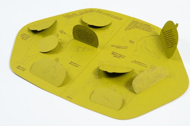 半隻羊立體書實驗室透過作品《解剖》,說明立體書的由來。(奇美博物館提供)