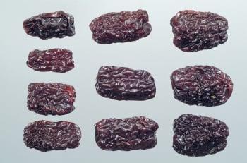 【大真博士話中醫】棗子的季節,中藥常用的大棗是紅棗還是黑棗?